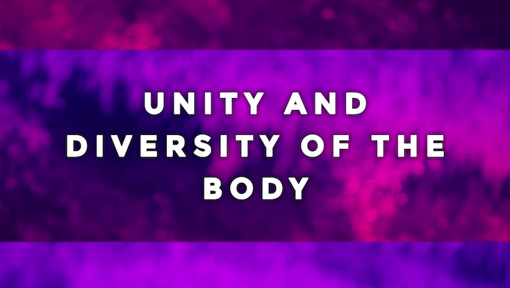 Cover photo for Message: Unity and Diversity of the Body